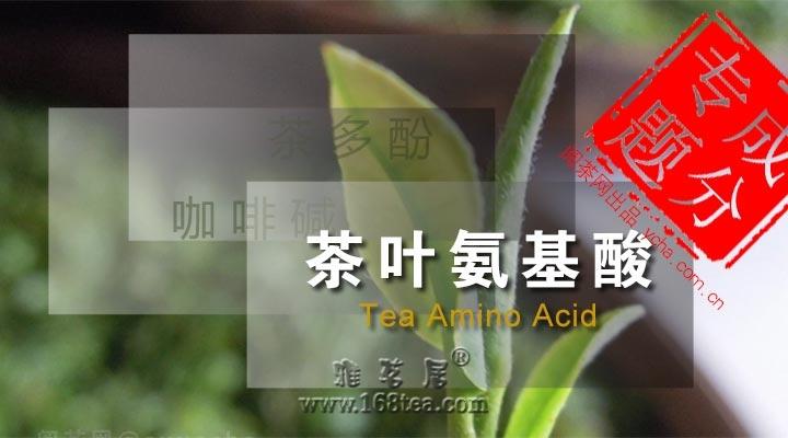 茶叶成分-氨基酸【茶叶知识】