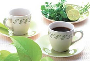 消脂绿茶|减肥配方