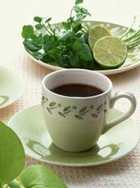 绿茶粉瘦身|荷叶清茶