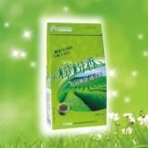 绿茶粉功效|比较
