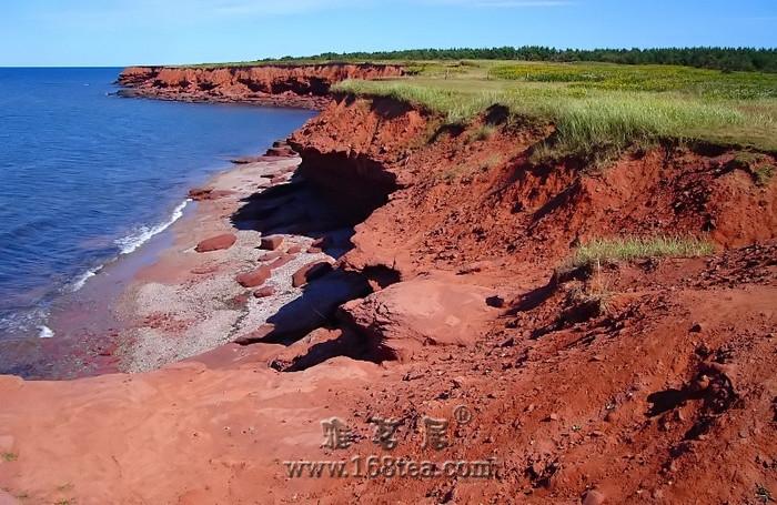 什么是紫砂壶红泥?
