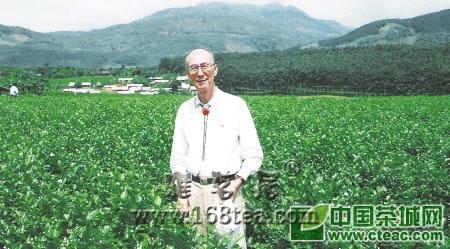 张大为:开创媒介宣传茶叶先河(