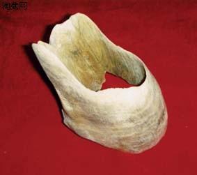 沉香木箍形器鉴赏(图)
