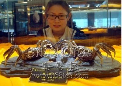 """苏州惊现3.5万元高价""""紫砂螃蟹"""""""