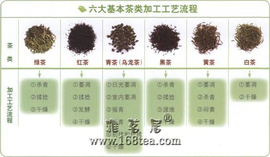茶叶制作工艺