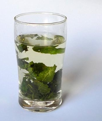 减肥效果较好的乌龙茶