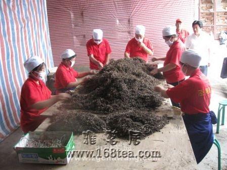 泾阳砖茶的制作工序