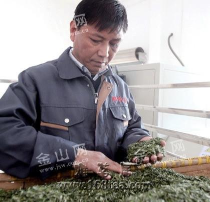 """江苏镇江茶农发明""""蒸汽茶"""" 掀起绿茶生产革命"""