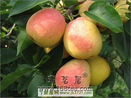 健康减肥水果:吃梨减肥