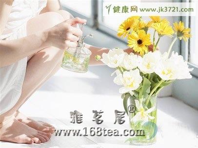 女性健康养颜食品:菊花