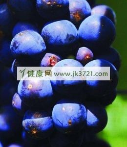 抗衰老健康蓝莓食谱