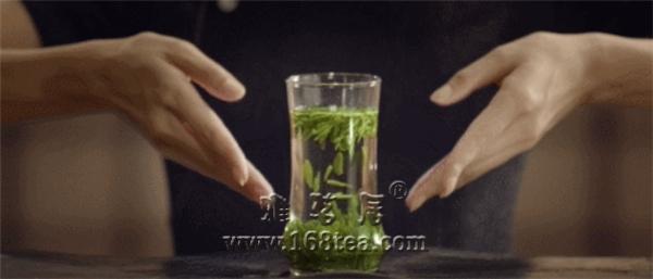竹叶青茶:感受中国茶的无尽魅力