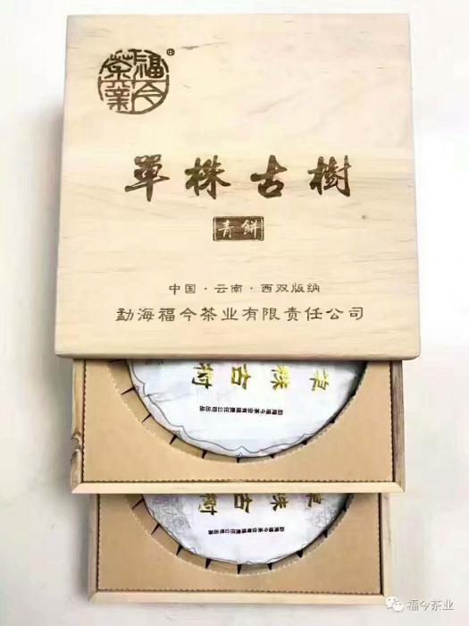 2017福今单株古树青饼