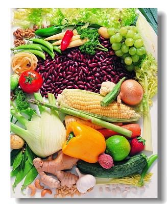 食物性能与药物性能有什么不同?