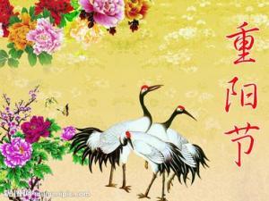 重阳节的起源与风