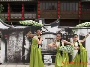 茉莉花茶道表演,茶艺,茶道
