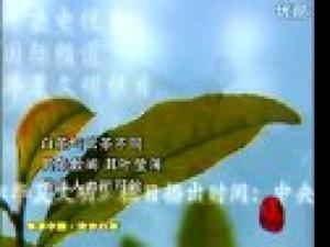 安吉白茶茶艺解说茶艺视频