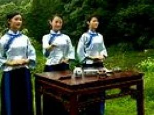 茶艺教学视频 |宫廷茶艺|茶艺表演视频