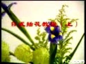 插花教学视频|茶艺培训