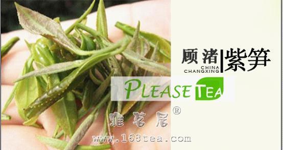顾渚紫笋|浙江名茶