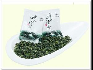 日铸雪芽|浙江名茶