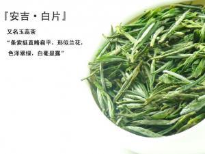 安吉白片|浙江名茶