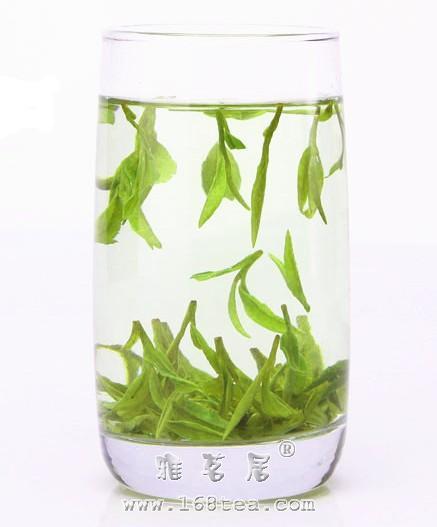 舒城兰花|安徽名茶
