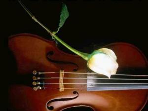 深沉的大提琴曲30首