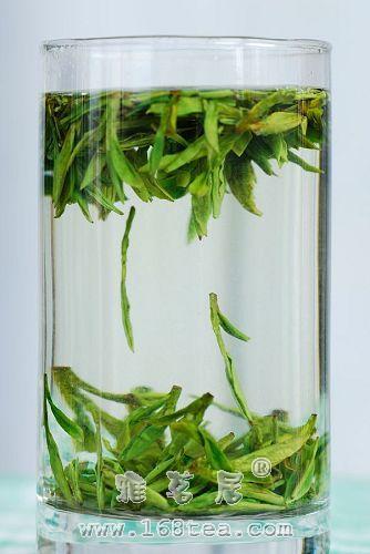 玻璃杯泡黄山毛峰茶艺(中投法)