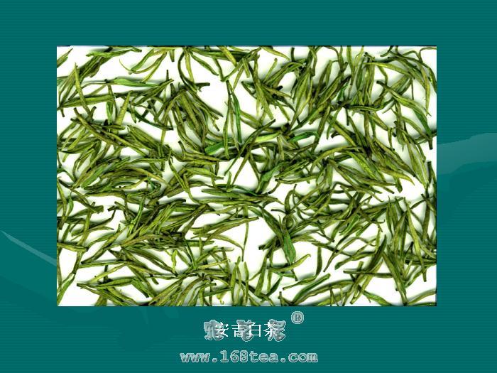 安吉白茶之白茶茶艺介绍