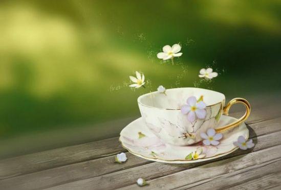 听茶品禅(青石/文)|禅茶一味