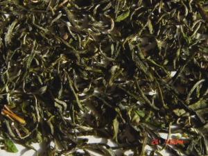 竹溪龙峰春茶图片