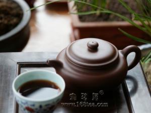 养普洱茶的紫砂壶