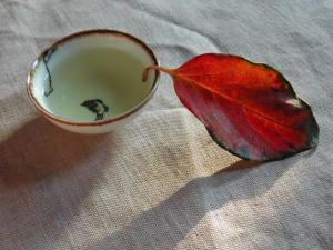 龙女儿茶道摄影作品