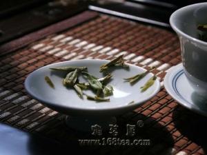 龙女儿乌牛早茶摄影
