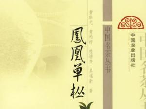 凤凰单枞茶资讯|广东饶平县打造单丛茶文化