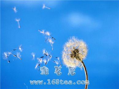 王凤仪:何为天性