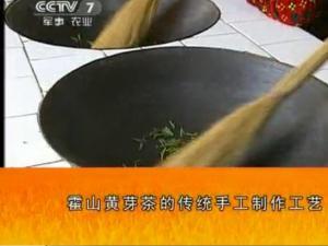 霍山黄芽茶的传统手工制作工艺流程