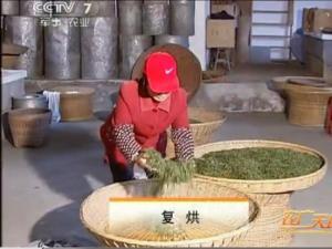 霍山黄芽茶的传统手工制作5:复烘工艺