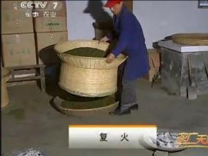 霍山黄芽茶的传统手工制作7:复火工艺