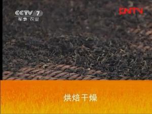 安化黑茶制作工艺:烘焙干燥工艺