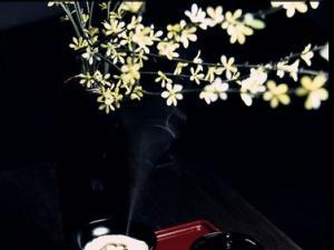 秋季,我们一起来香道养生