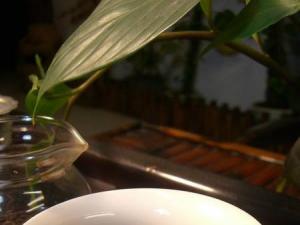 冲泡老普洱茶的图片