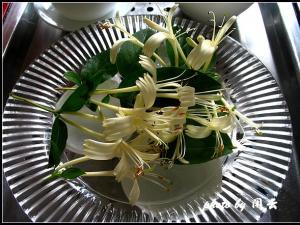 武夷水仙品茶图片
