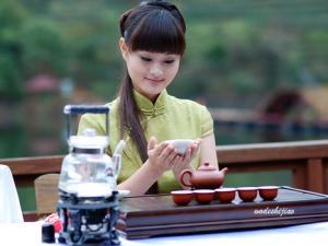 福建乌龙茶茶艺表演图片