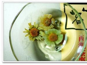 野菊花茶图片